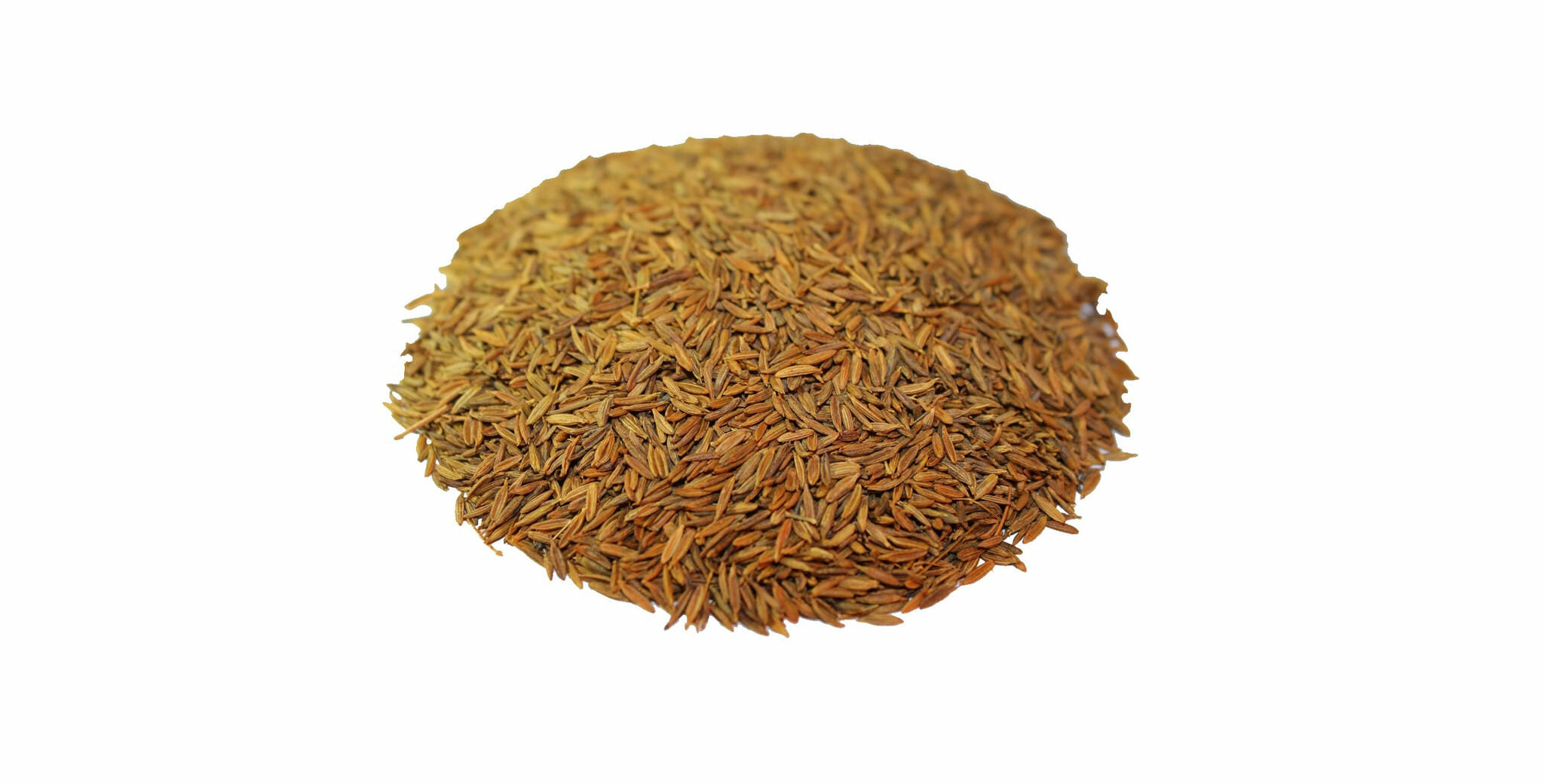 Cumin (Jeera) dried whole seeds - The Spiceworks | Online ...